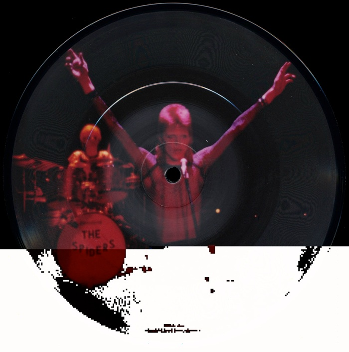 Rock N Roll Suicide Pic Disc
